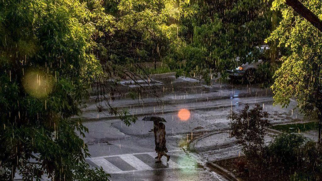 rain tally alberto 20180530