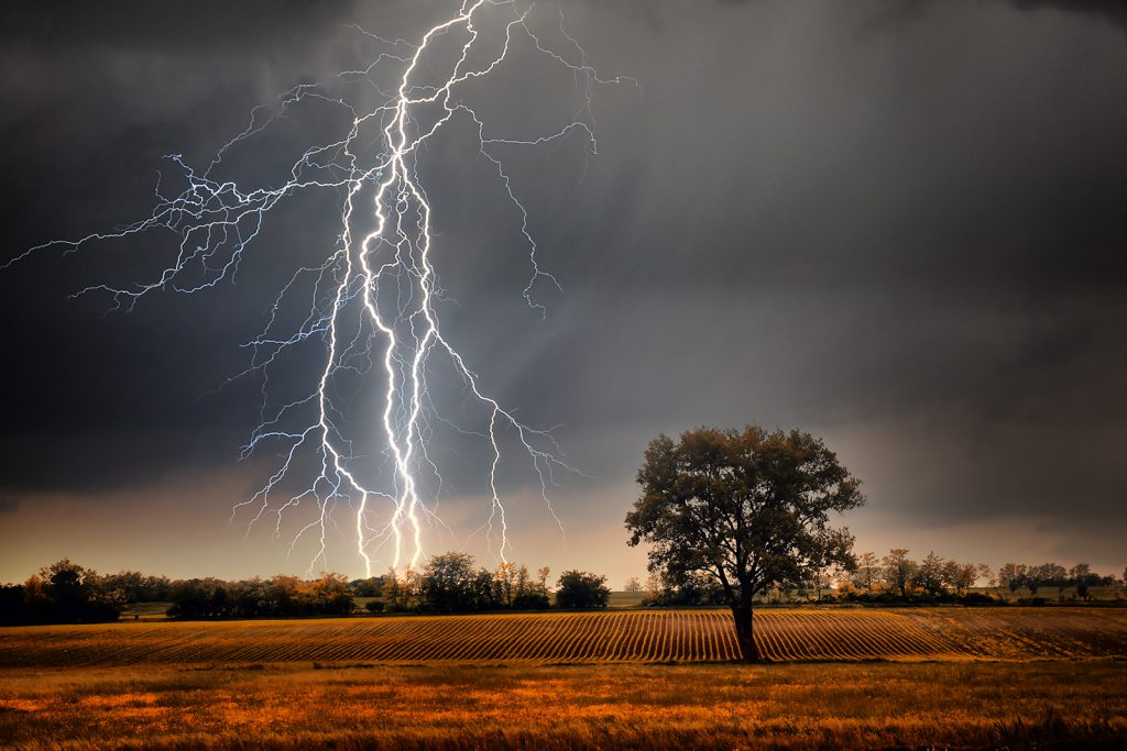 Lightning farm field energy tree Weather electricity